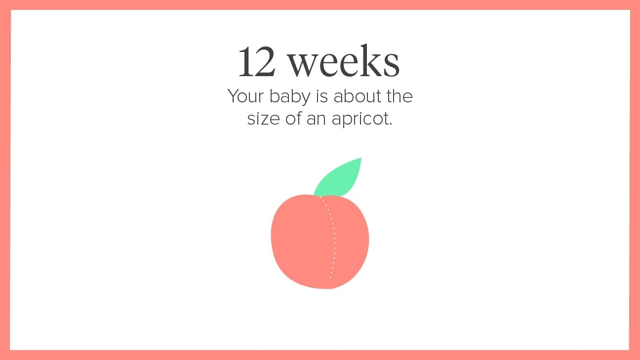 12 Weeks Pregnant: Symptoms, Tips, And More throughout Pregnancy Stages Months And Weeks