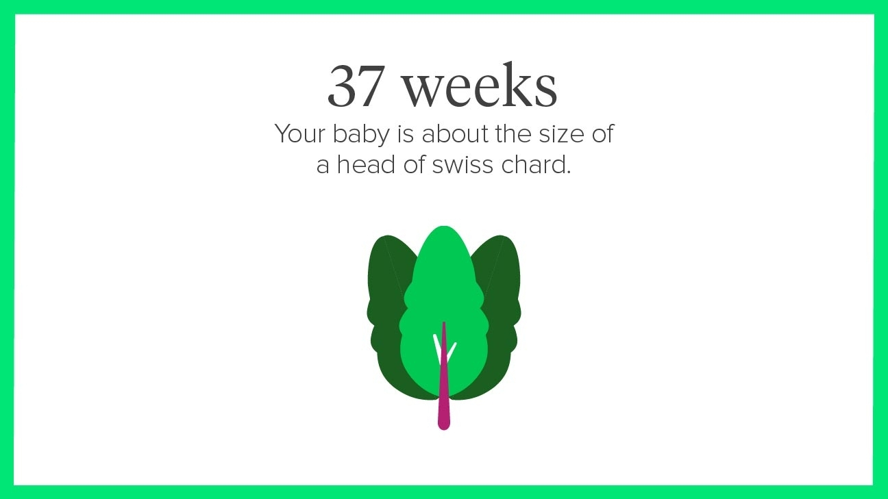 37 Weeks Pregnant: Symptoms, Tips, And More inside Pregnancy Stages Months And Weeks