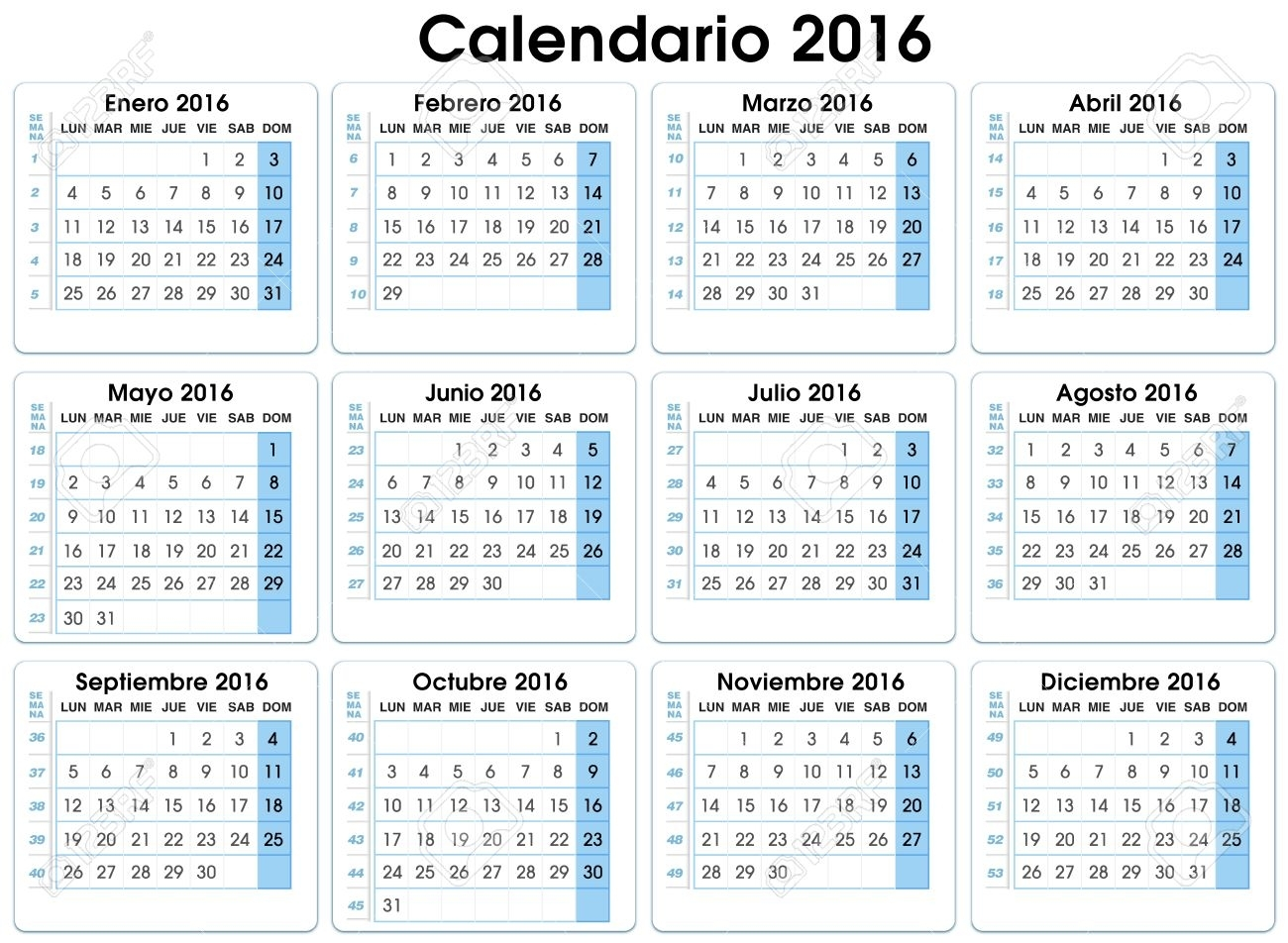 Calendar Vertical 2016. Spanish. 12 Months, Indicating Number in Calendar With The Months Number