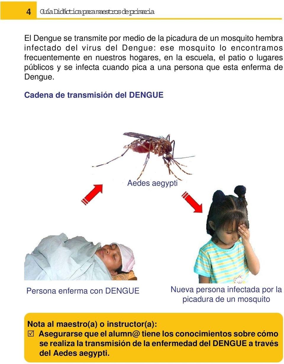 Cartilla Básica Del Dengue - Pdf in Nombre Escrito Del Dengue Dibujado