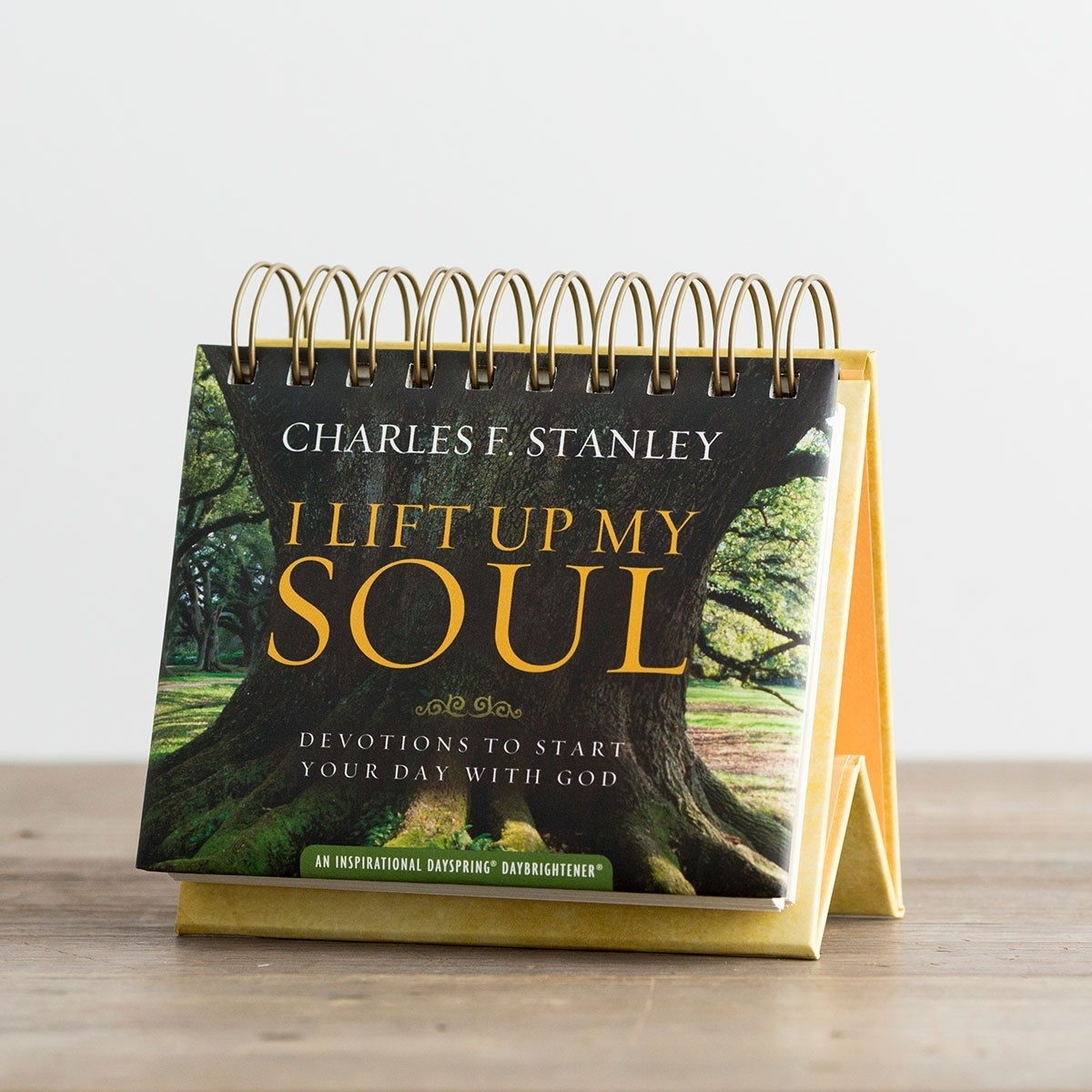 Charles Stanley - I Lift Up My Soul - 365 Day Perpetual Calendar with Add Your Own Picture To A 365 Days Perpetual