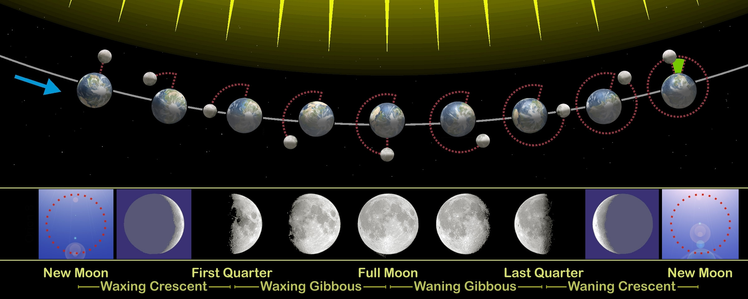 File:moon Phases En - Wikimedia Commons for Phases Of The Moon Over The Month