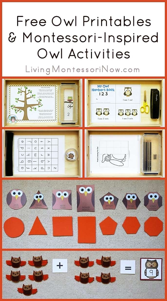 Free Owl Printables And Montessori-Inspired Owl Activities with Birthday Calendar Montessori For Print