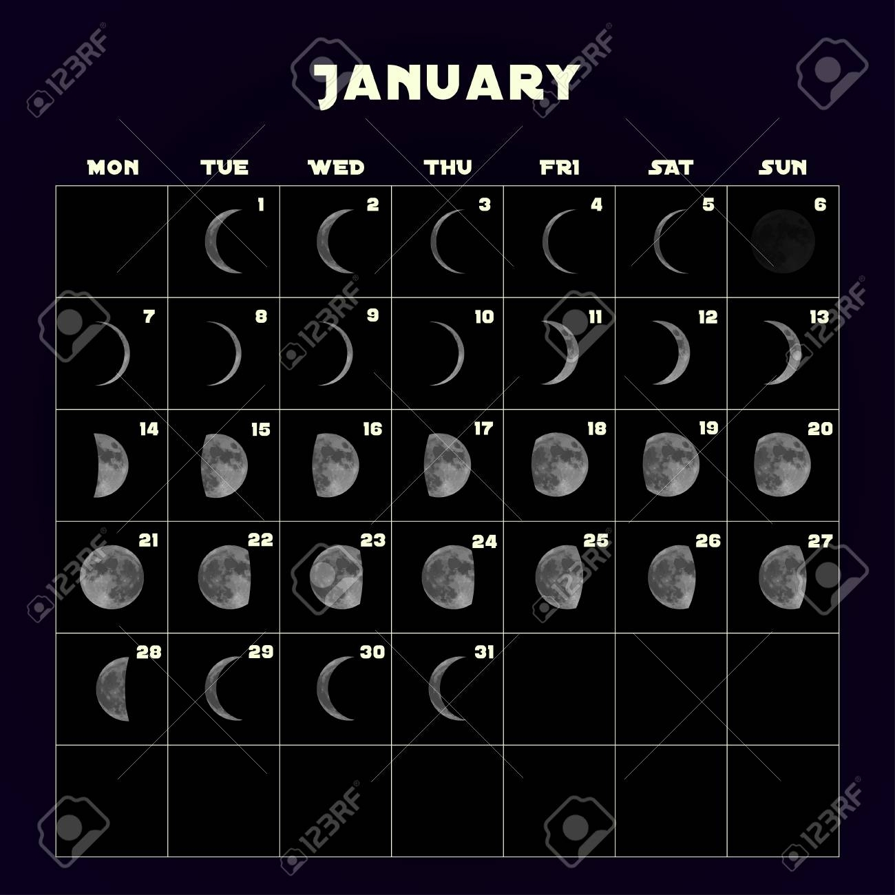Moon Phases Calendar For 2019 With Realistic Moon. January. Vector throughout Phases Of The Moon Calendar