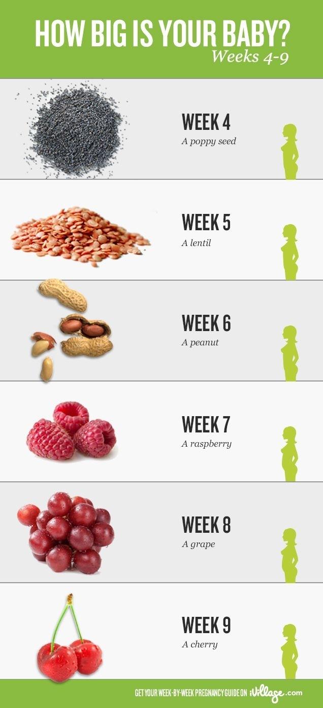 Pincoreena Kircher On Everything Pregnancy | Pregnancy Calendar pertaining to Pregnancy Calendar Week By Week