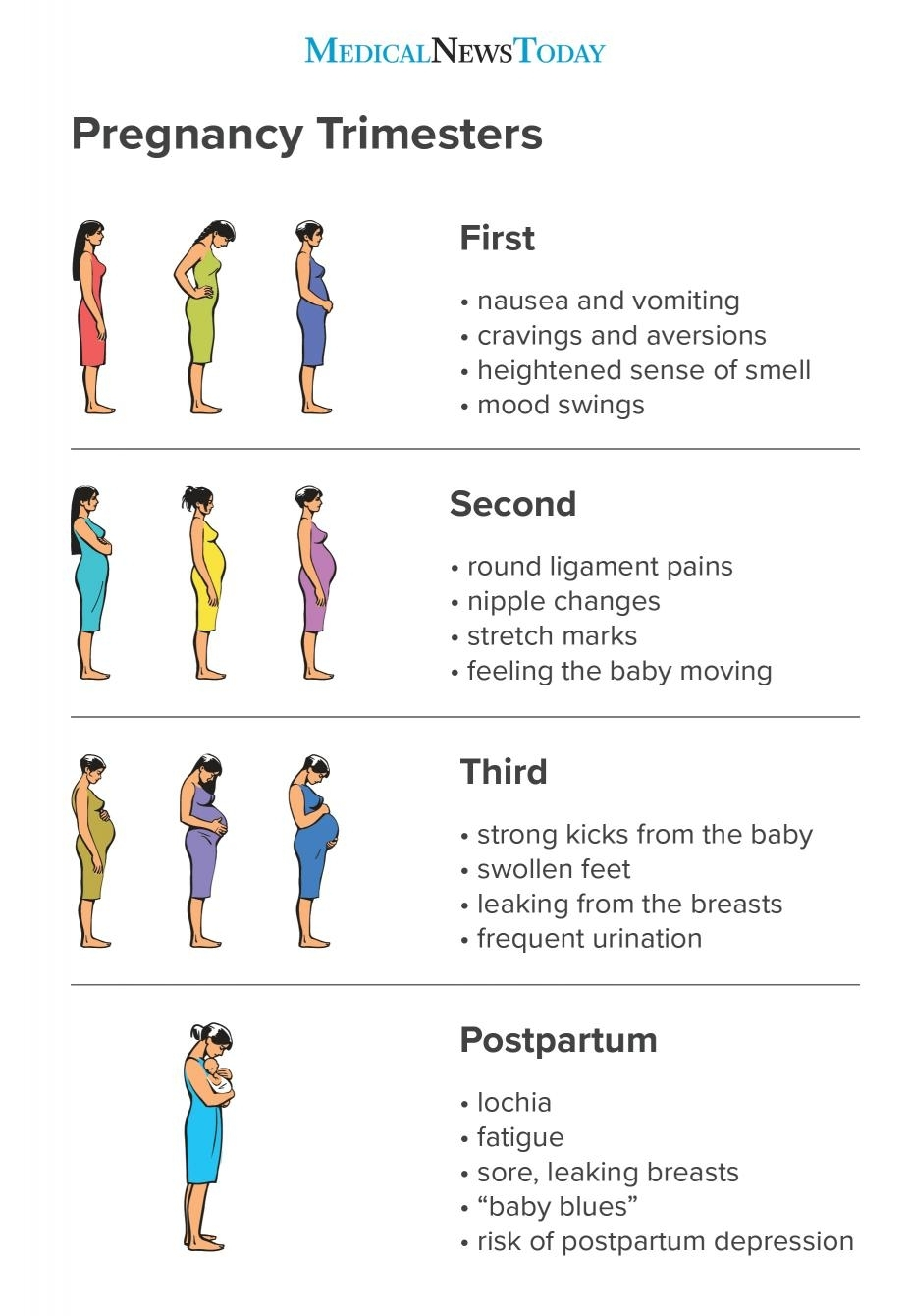 Pregnancy Trimesters: Everything You Need To Know intended for Pregnancy Stages Months And Weeks