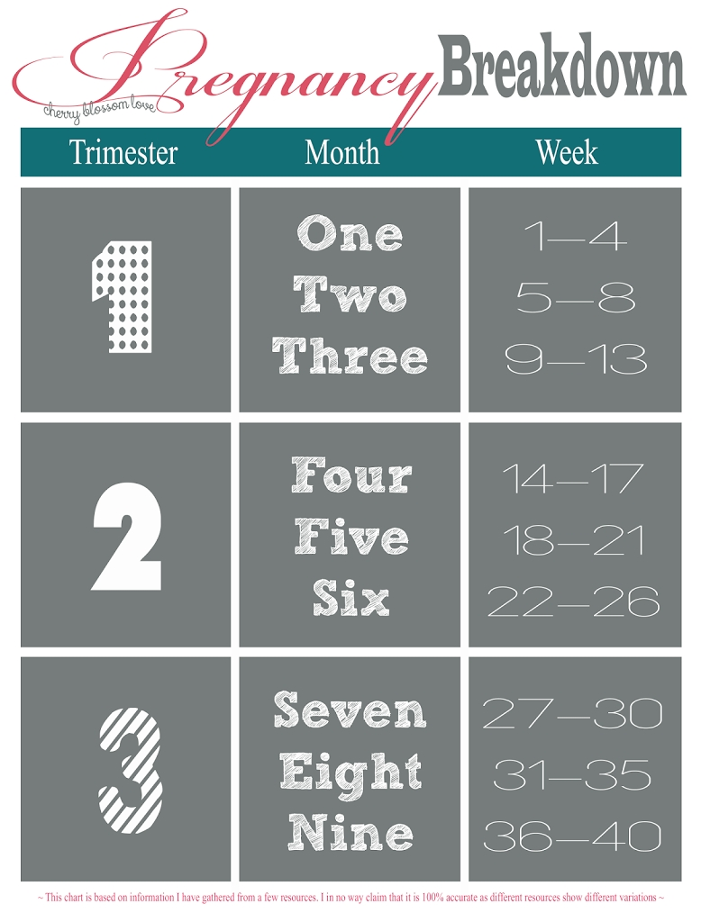 Pregnancy Week, Month, Trimester Chart | Momma To Be | Trimester throughout Pregnancy Week To Month Calendar