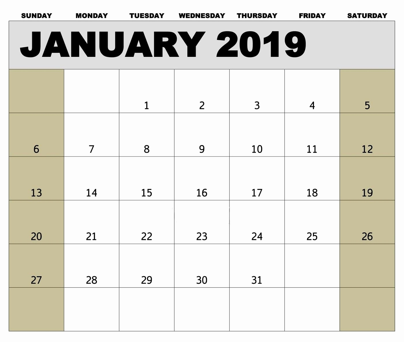 Printable Monthly Calendar 2019 Ireland January 2019 Biweekly in Calendar Of Biweekly Pay Dates