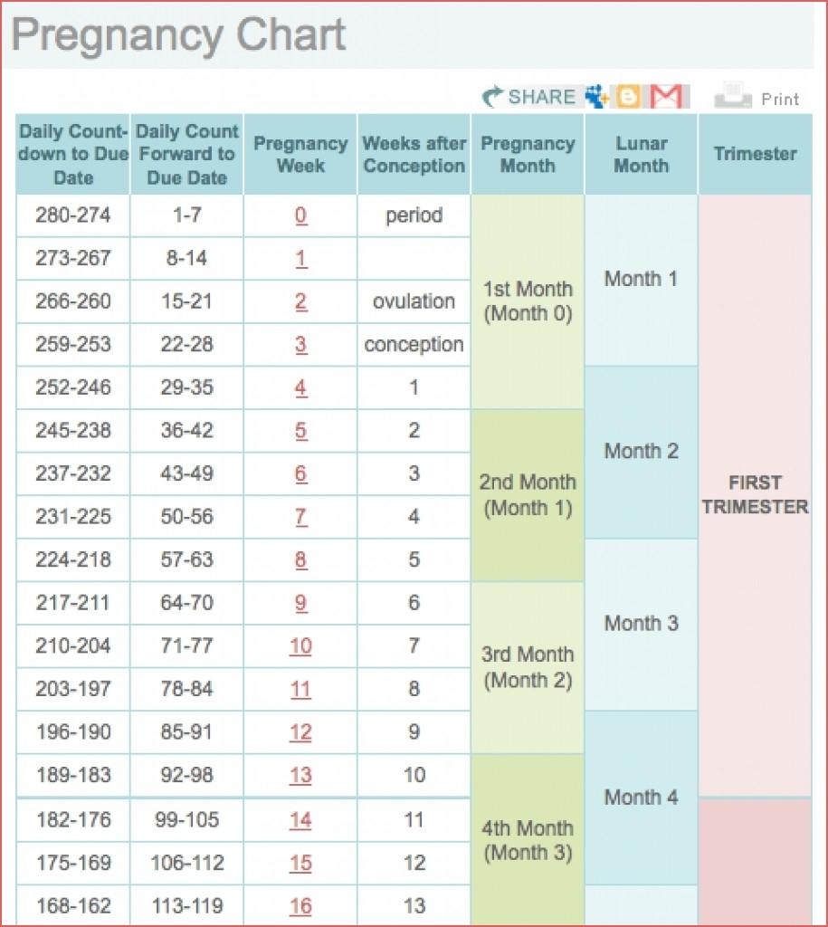 Printable Pregnancy Calendar Weekweek Ovulation Calendar Excel for Pregnancy Week By Week Calendar