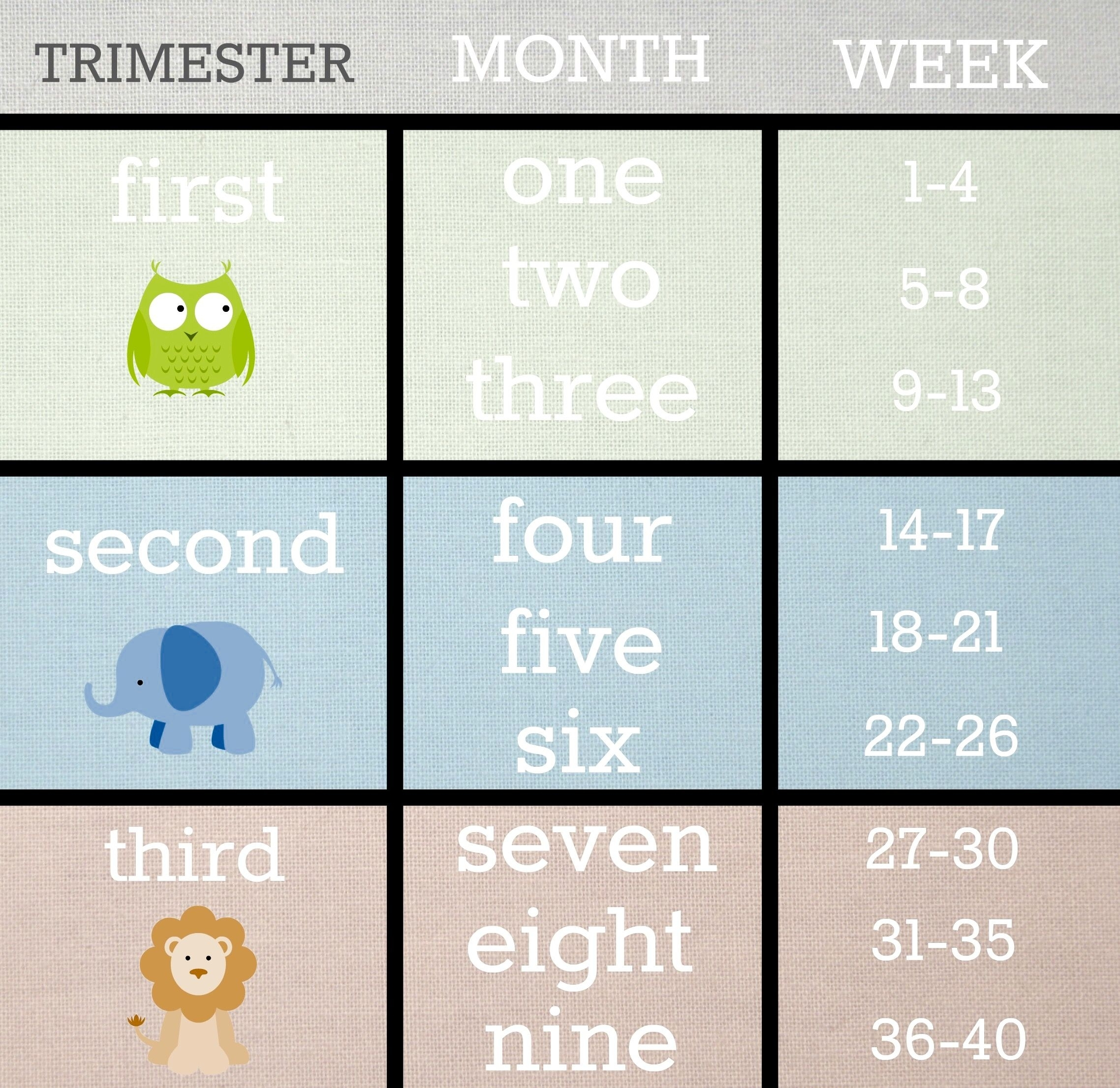 Trimester Break-Downs | Need To Know! | 21 Weeks Pregnant, 22 Weeks with regard to Pregnancy Calendar Weeks To Months