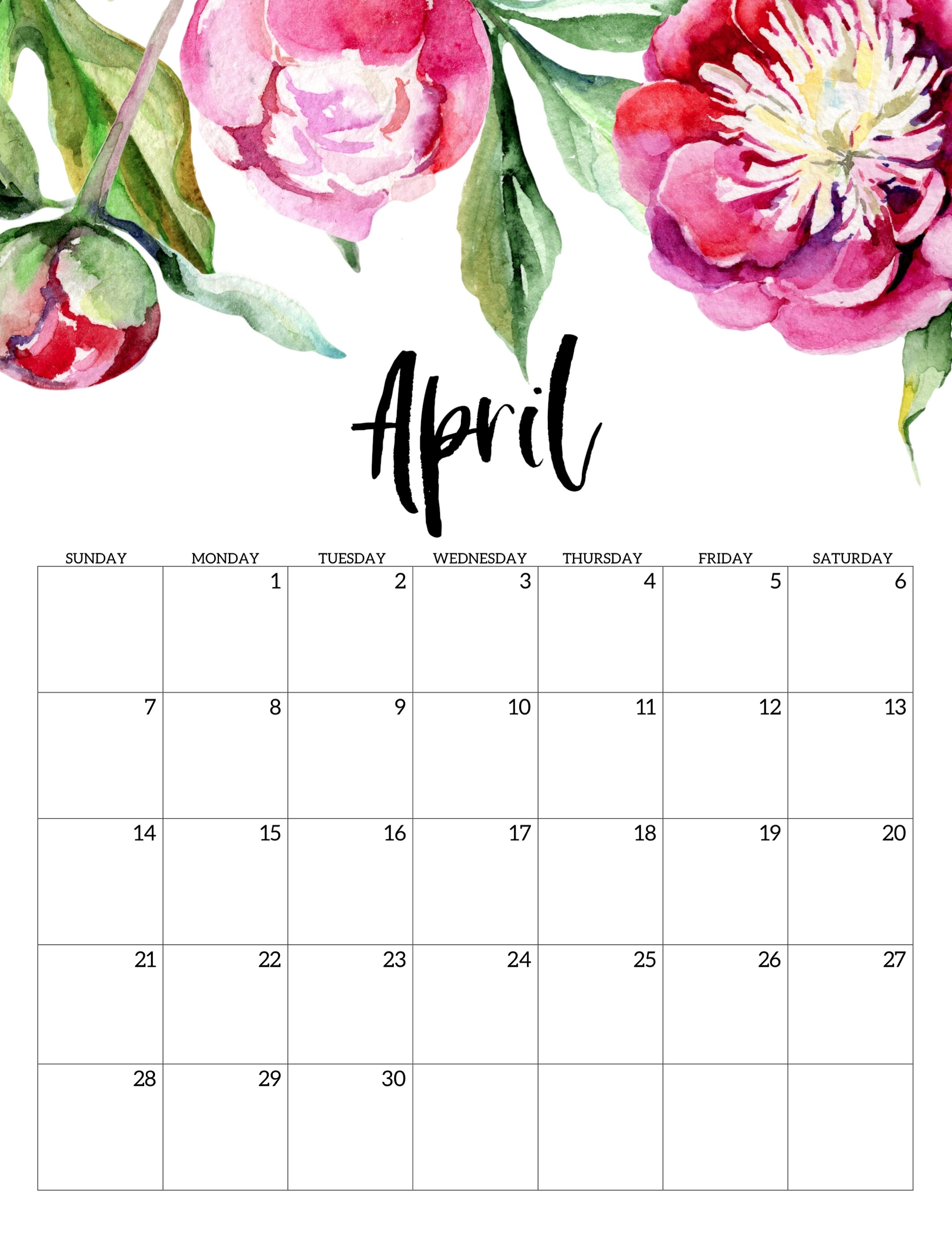Free Printable Calendar 2019 - Floral - Paper Trail Design intended for 2019 2020 Girly Calendar Printable