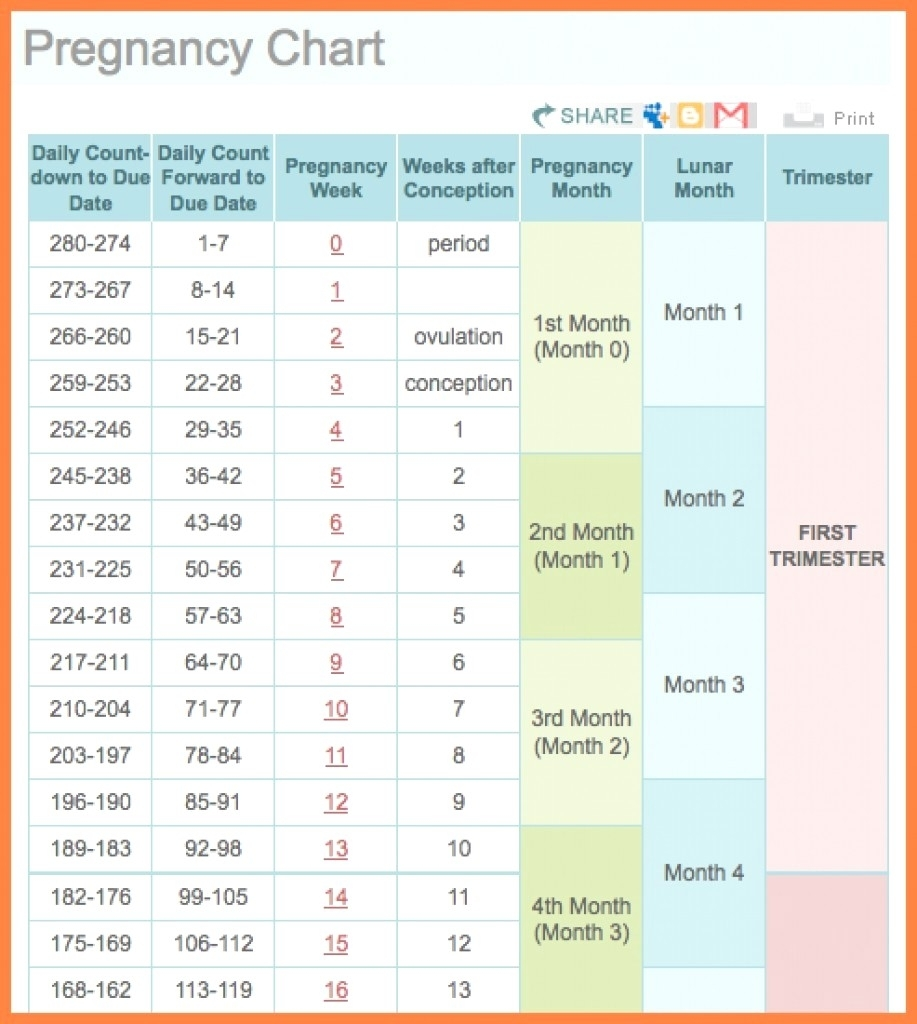 Pregnancy Weekcalendar Printable Of | Jcreview regarding Weekly Pregnancy Calendar Week By Week Pregnancy Calendar