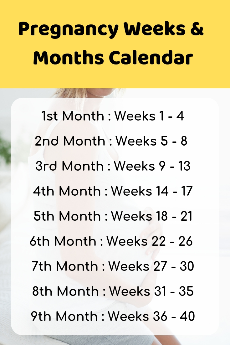 Pin On Pregnancy Tips intended for Month By Month Pregnancy Calendar