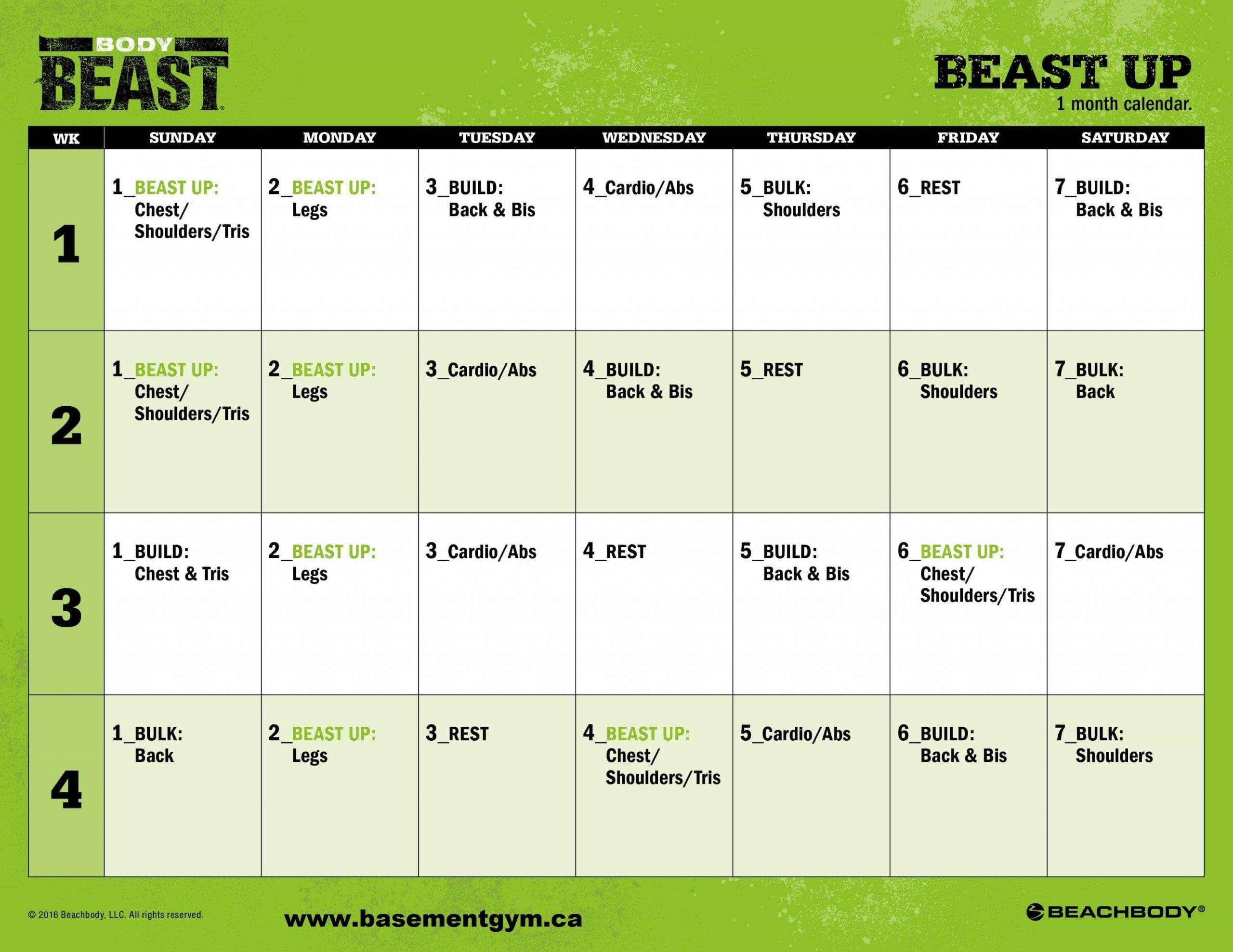 Beast Up   Sagi Kalev   Body Beast 2   Basementgym with Calendrier Hybride Insanity Max 30