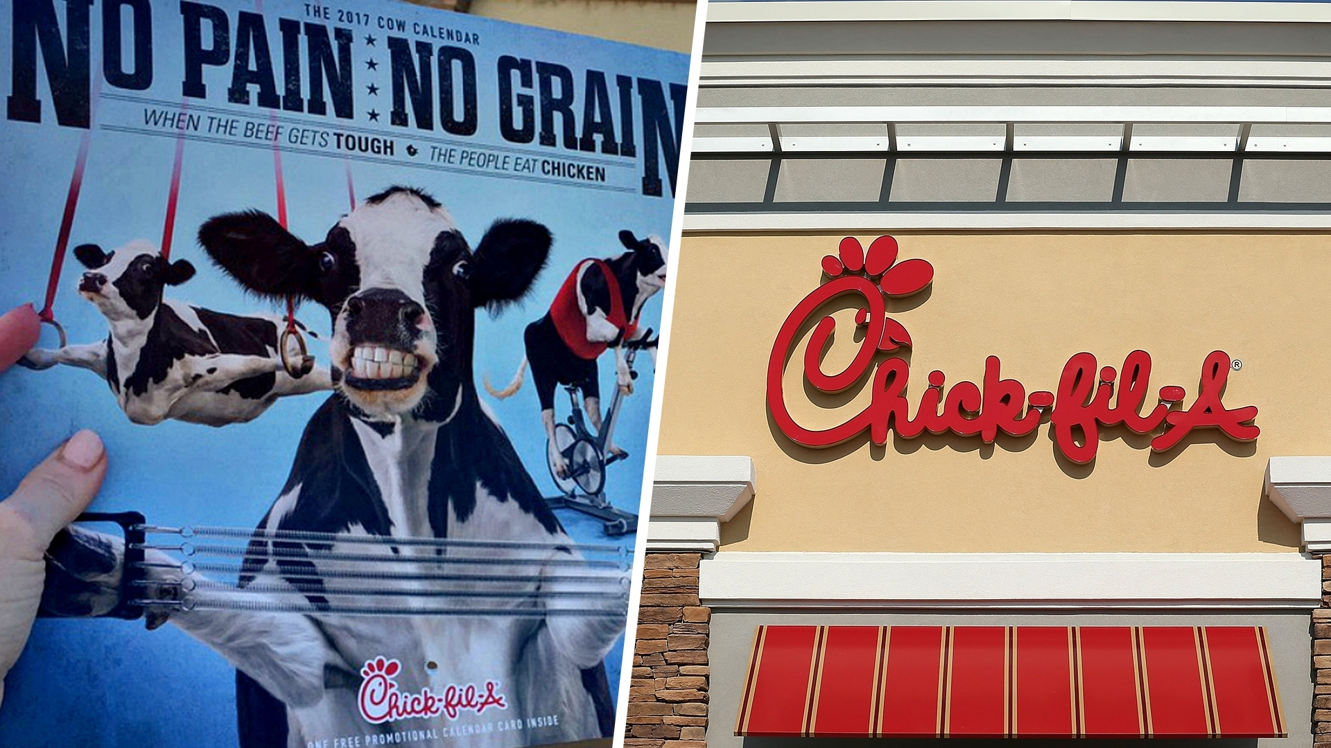 Chick-Fil-A Is Retiring Its Cow Calendar And Internet Is Mad