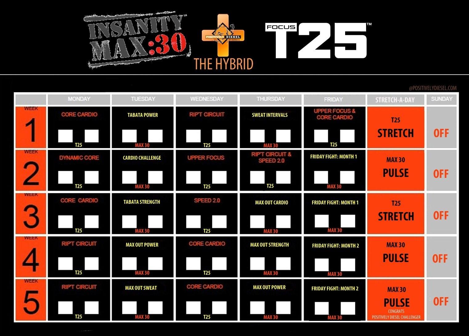 Hybrid_Max30&T25 | Insanity Max, Insanity Max 30, Insanity