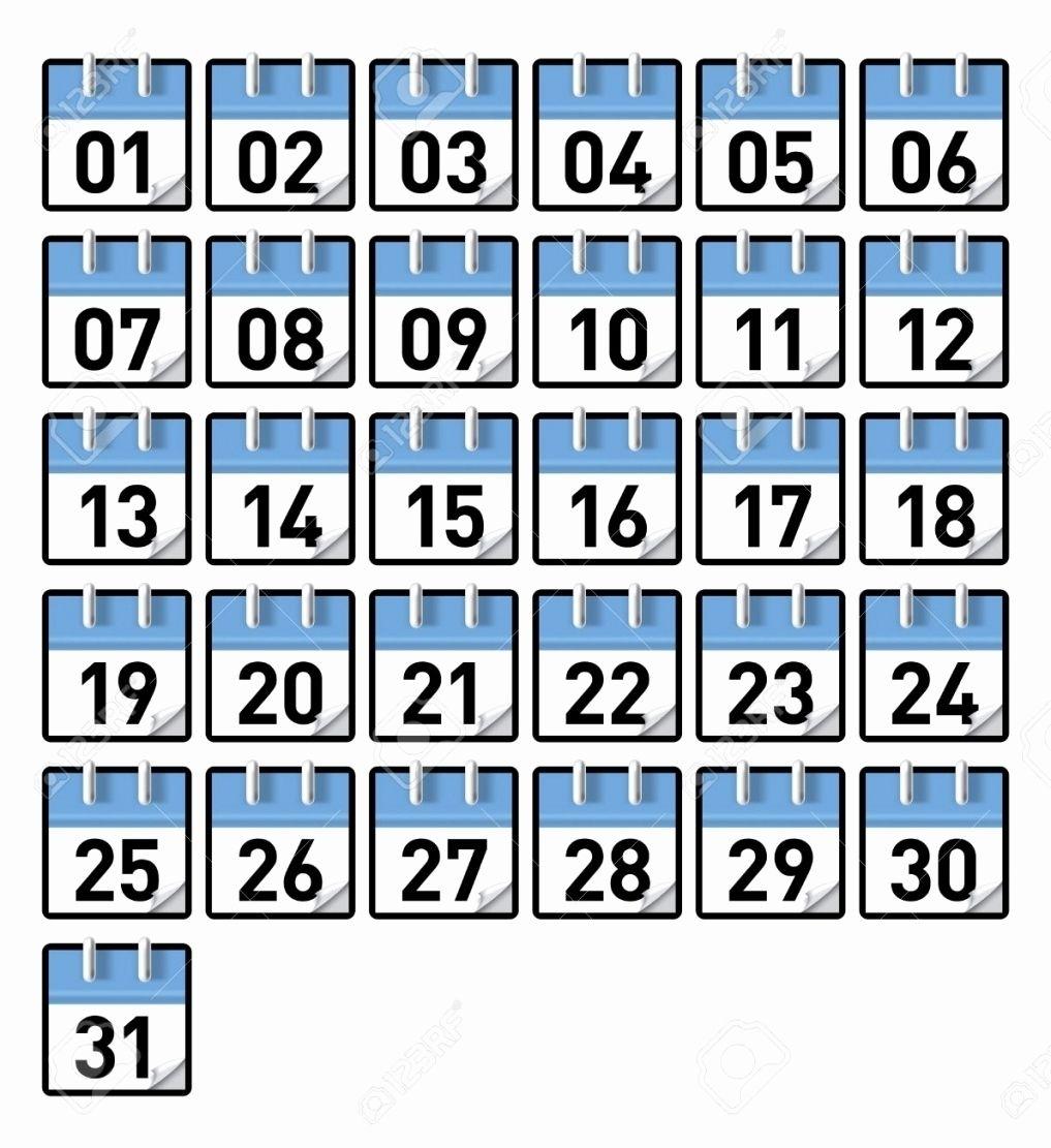 Image Result For 1-31 | Printable Calendar Numbers, Calendar