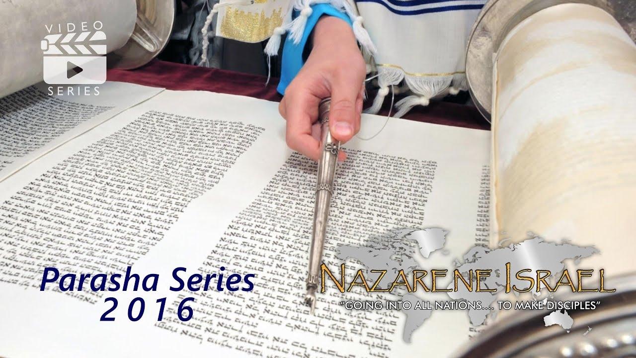 Parasha Tzav throughout Parasha In 2020 In Order
