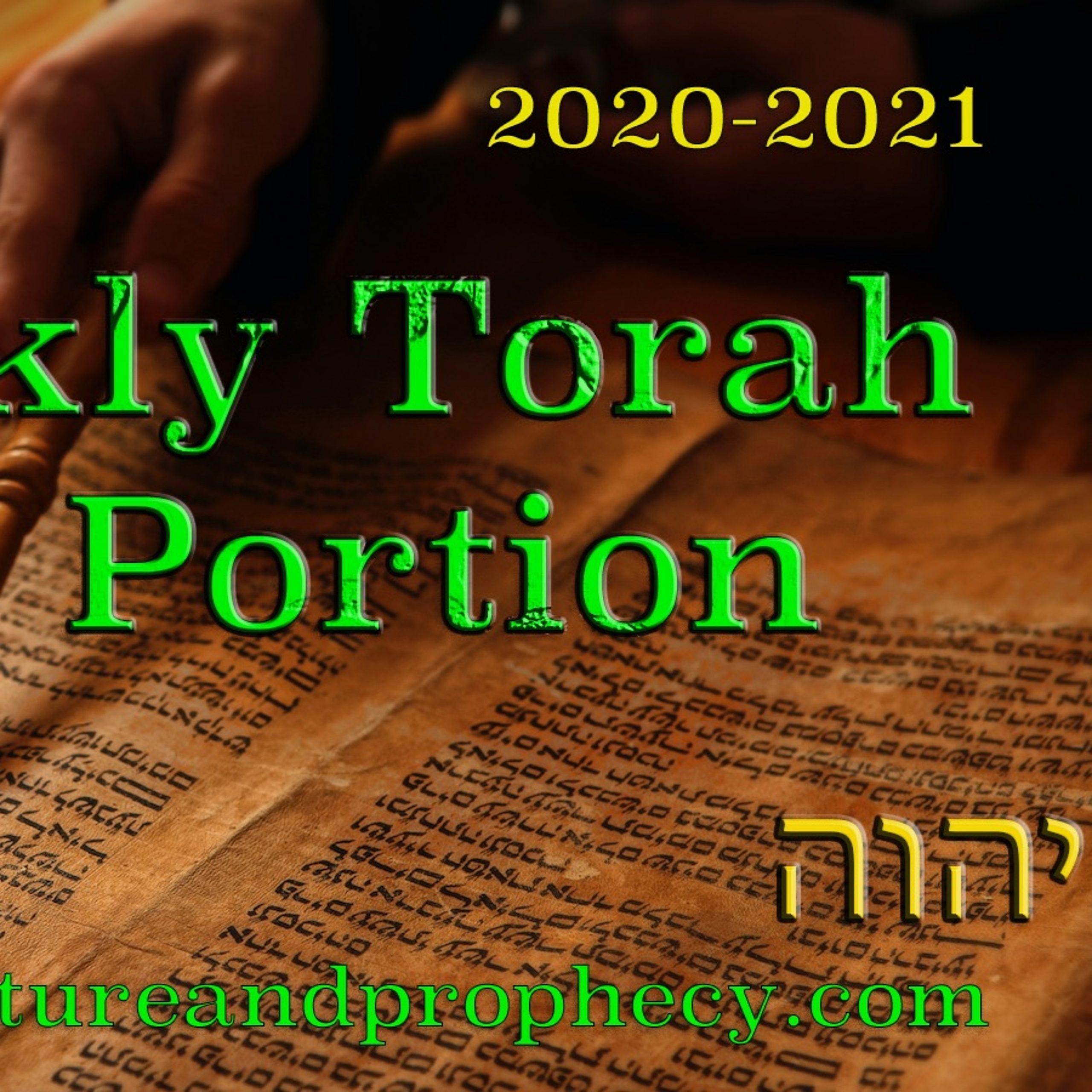 Torah Parasha Week 2 (2020-2021) - Noach- Noah — נח throughout Parasha In 2020 In Order
