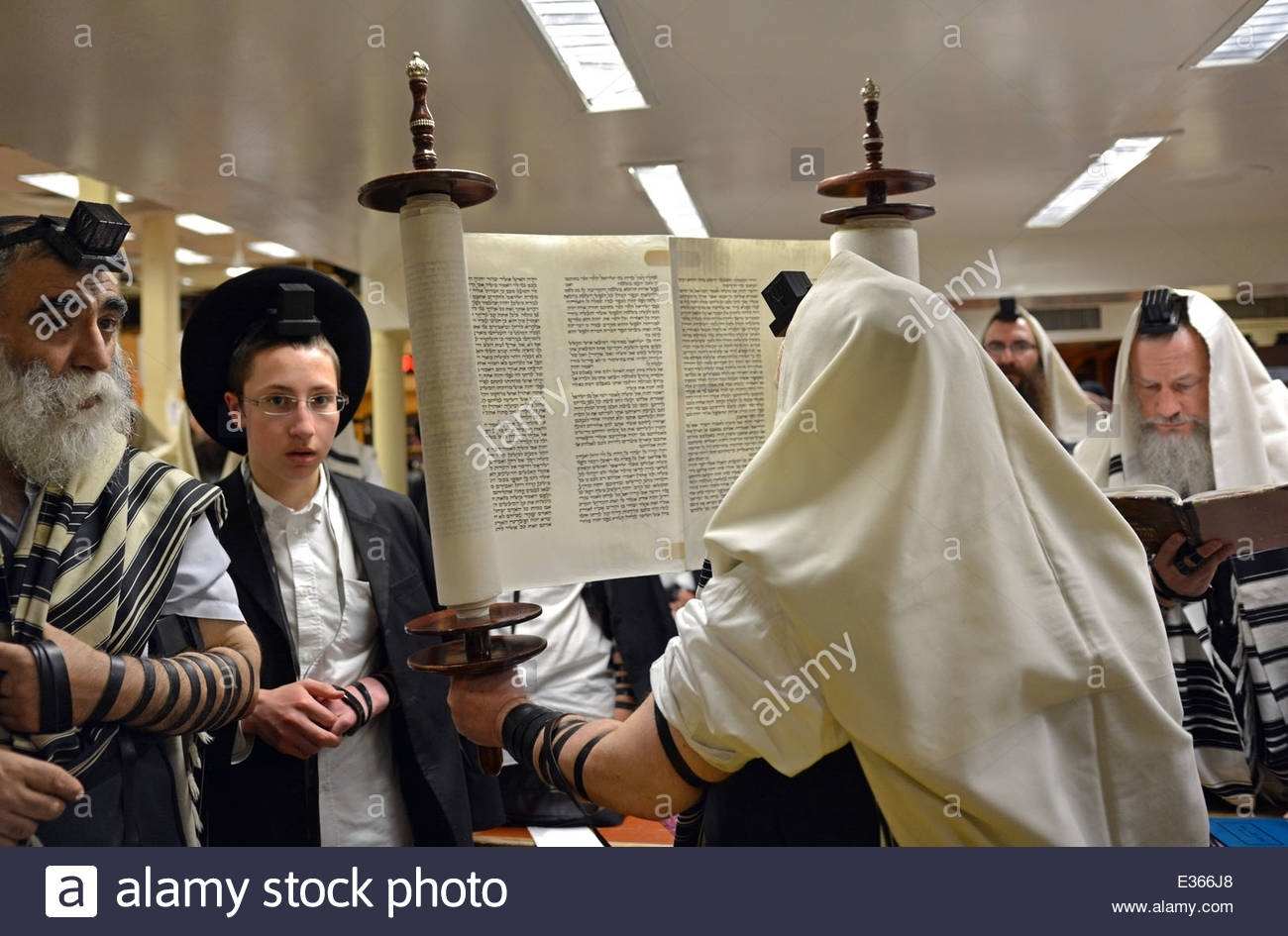 Torah Scroll Raised After A Reading At Morning Services At A with What Is The Next Reading For Torah