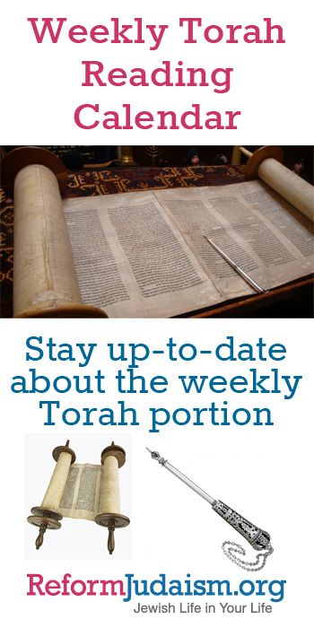 Learn About The Torah With Us! Keep Up With The Weekly