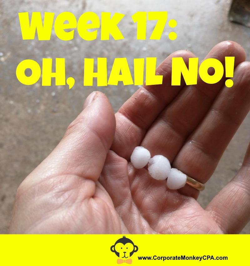 Week 17: Oh, Hail No! - Corporate Monkey, Cpa